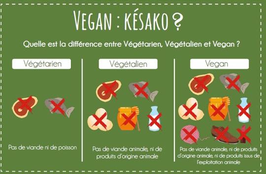 rencontre entre végétariens